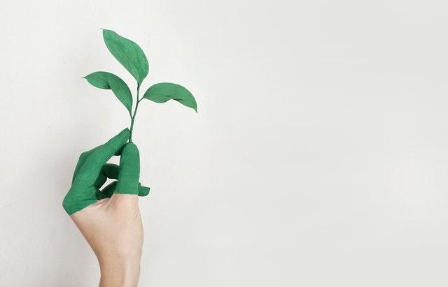 гъвкавите опаковки са по-екологични